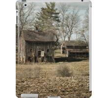 Digges Valley iPad Case/Skin