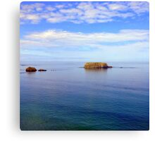 Rock and Water Landscape Canvas Print