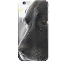 Still acts like a puppy iPhone Case/Skin