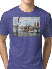Birds Flying High, You Know How I Feel... Tri-blend T-Shirt