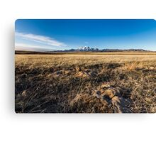 Grassland with mountain background Canvas Print