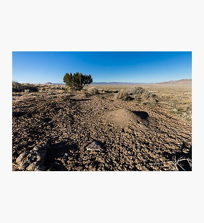Desert scene with ant hill and mud Photographic Print