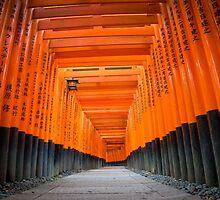 red torii gates by milena boeva