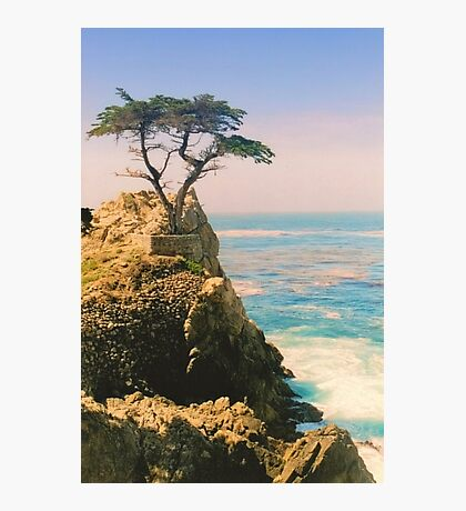 The Lone Cypress Photographic Print