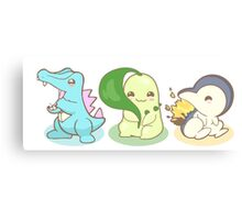 Johto Starter Pokemon Canvas Print