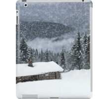 Bavarian Winter's Tale II iPad Case/Skin
