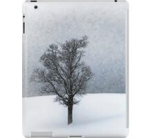 LONELY TREE Idyllic Winterlandscape iPad Case/Skin