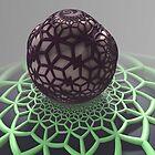 Spider's Egg by barrowda
