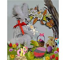 You Silly Wabbit!!! Photographic Print
