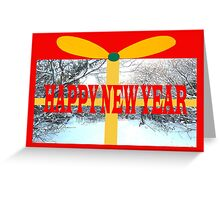 HAPPY NEW YEAR 17 Greeting Card