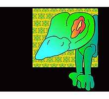 wicked frog  Photographic Print