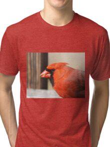 Northern Cardinal Tri-blend T-Shirt