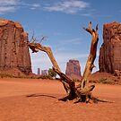 Monument Valley Treasures by Lucinda Walter