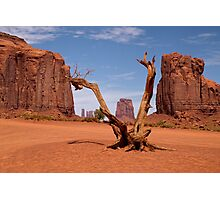 Monument Harmony Photographic Print