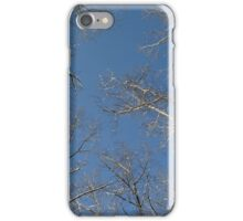tree branches against the sky, Siberia, Russia iPhone Case/Skin