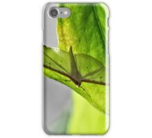 NS Resting Unknow Wings© iPhone Case/Skin