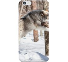 Hug a tree, it's Earth Day! iPhone Case/Skin