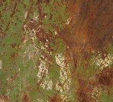 Green Rust by TinaGraphics