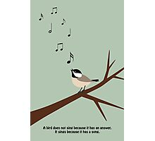 """""""A bird does not sing because it has an answer. It sings because it has a song."""" Photographic Print"""
