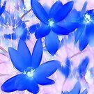 BlueGrass Summer by John Poon