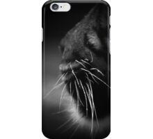 Amur Tiger Whiskers iPhone Case/Skin
