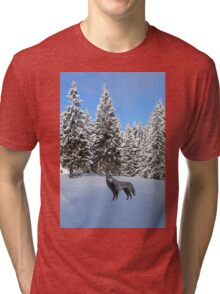 A wolf in the snow. Tri-blend T-Shirt