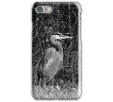 Heron, Hunting iPhone Case/Skin