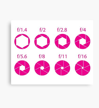 F-Stops-Pink Canvas Print