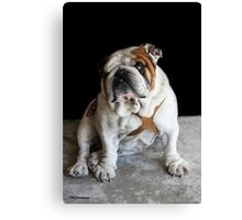 My Name is Papi, What's Yours? Canvas Print
