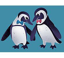 Dapper Penguins Photographic Print