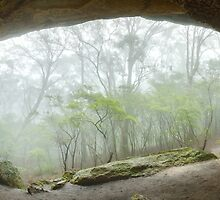 Dance Floor Cave, Kanangra Boyd National Park, New South Wales, Australia by Michael Boniwell