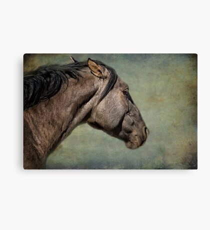 Garcia No. 1- Pryor Mustangs Canvas Print