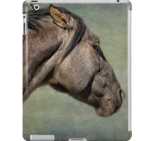 Garcia No. 1- Pryor Mustangs iPad Case/Skin