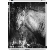 Garcia No. 2-Pryor Mustangs bw iPad Case/Skin