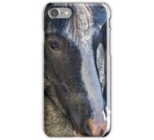 Bachelor Stallions - Pryor Mustangs iPhone Case/Skin