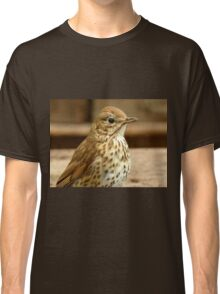 I'm As Beautiful As My Song Is..! - Song Thrush - NZ Classic T-Shirt