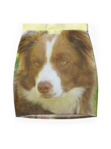 Agility & Intensity Are My Middle Names!! - Border Collie - NZ Mini Skirt