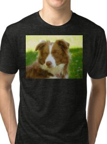 Agility & Intensity Are My Middle Names!! - Border Collie - NZ Tri-blend T-Shirt