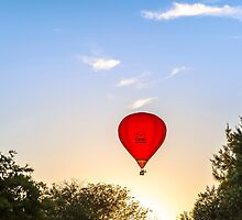 Red Poppies Hot Air Balloon in Martinborough, New Zealand by SeeOneSoul