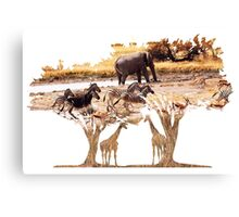 African Nature Canvas Print