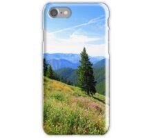 Birds Eye View...Ketchum, Idaho iPhone Case/Skin