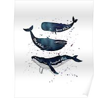 Watercolor whales Poster