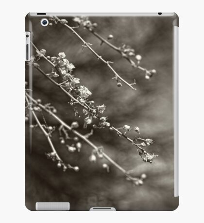 Time Moves On iPad Case/Skin