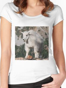 Mountain Goat Kid Standing on a Boulder Women's Fitted Scoop T-Shirt