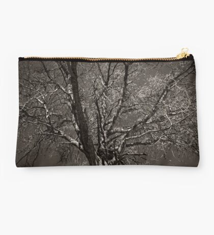 Love Can Last Forever Studio Pouch