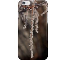 Frosty Pendant 2 iPhone Case/Skin