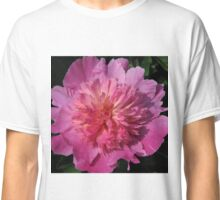 PAEONIA CORAL Classic T-Shirt