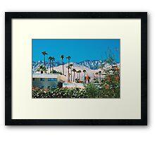 Desert Blooms (Palm Springs) Framed Print