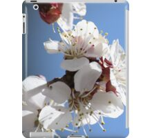 APRICOT BLOSSOMS iPad Case/Skin