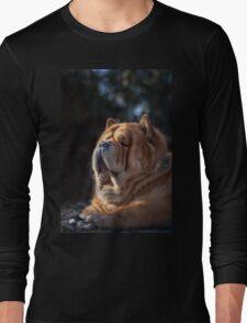 Chow-Chow portrait Long Sleeve T-Shirt